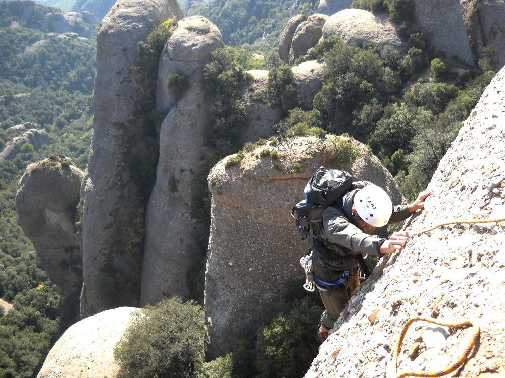 Aresta Brucs a la Sacagran, Montserrat, Espagne 2